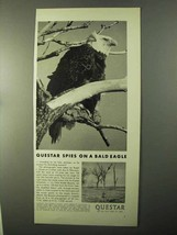 1971 Questar Telescope Ad - Spies on a Bald Eagle - $14.99
