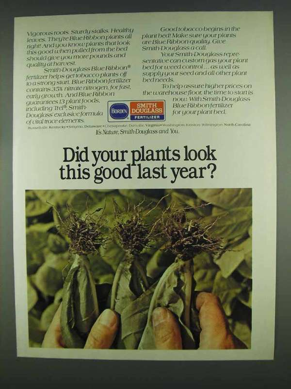 1978 Borden Smith Douglass Fertilizer Ad - Look Good - $14.99