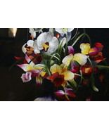 Orchid Bouquet Silk Hmong Embroidery Needlework... - $581.99
