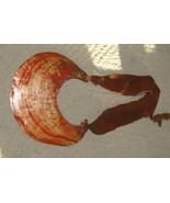 Rare Moka Kina Shell Ceremonial Object Foi trib... - $484.99