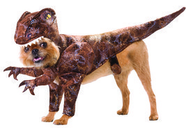 Pet Raptor Animal Planet Small Costume - €25,27 EUR