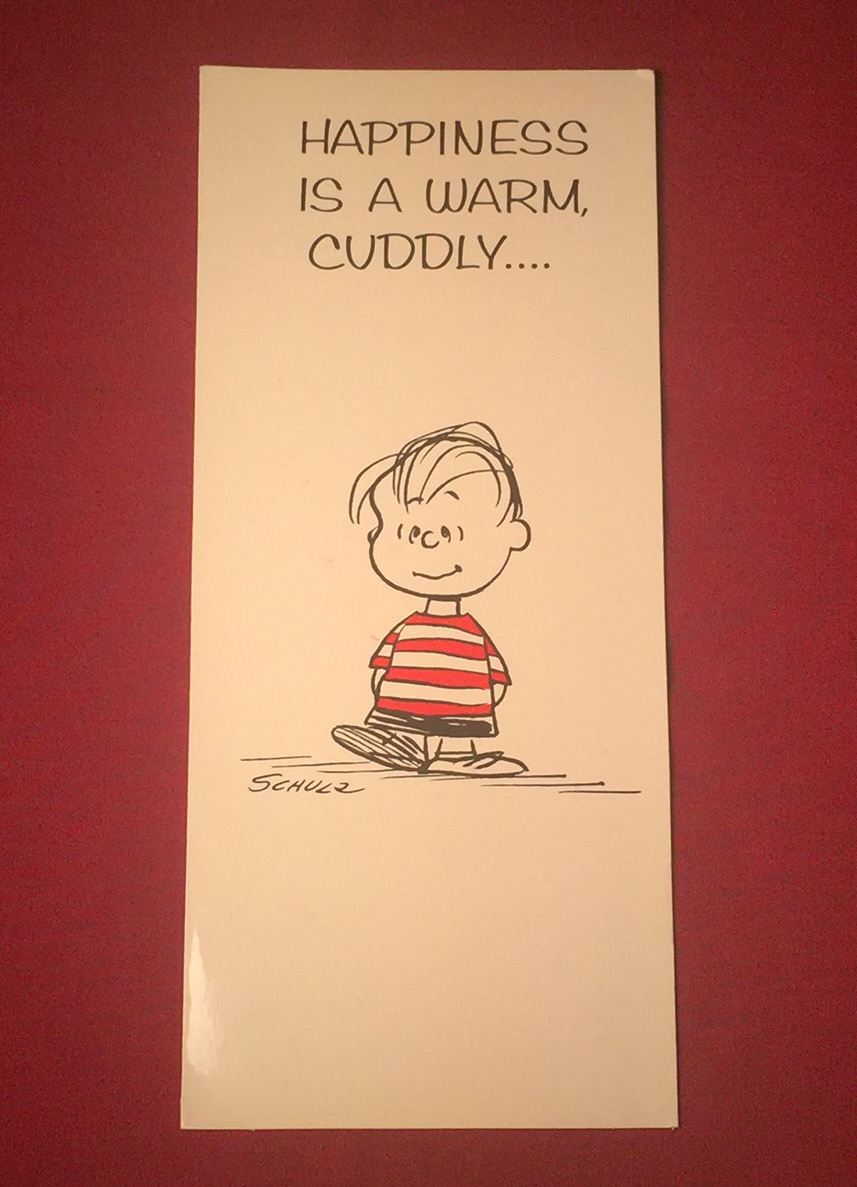 Vintage Peanuts Valentine's Day greeting card Hallmark Contemporary Cards 1960s