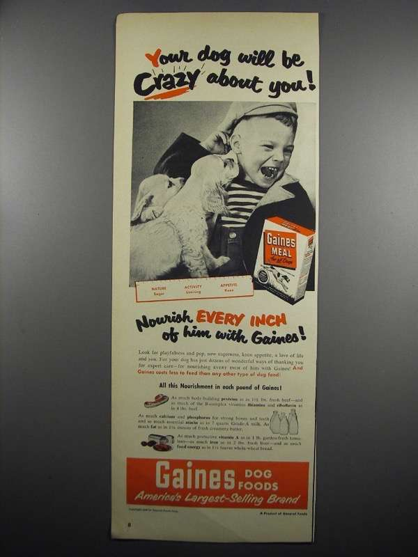 Primary image for 1950 Gaines Meal Dog Food Ad - Your Dog Will be Crazy