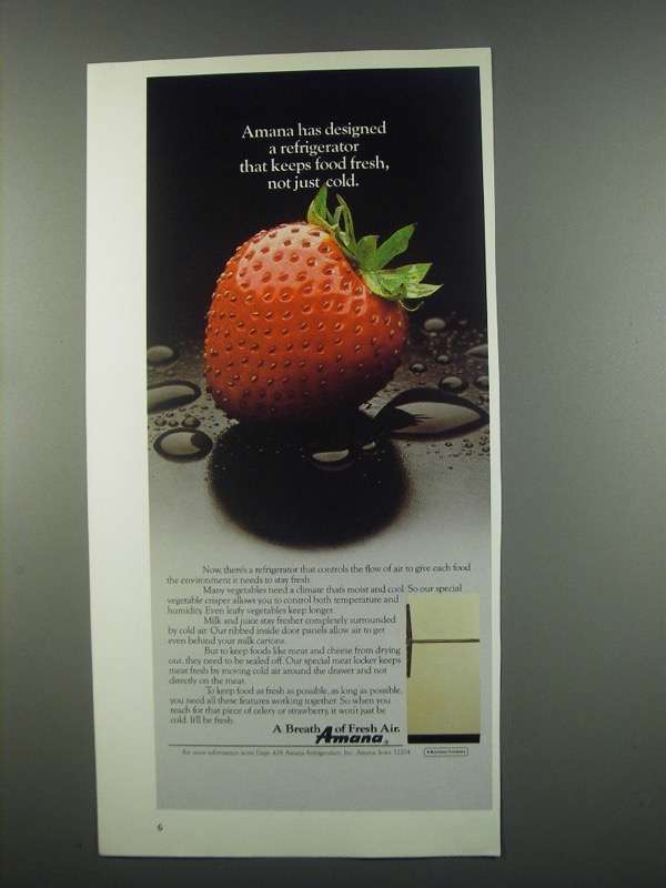 Primary image for 1984 Amana Refrigerator Ad - Keeps Food Fresh