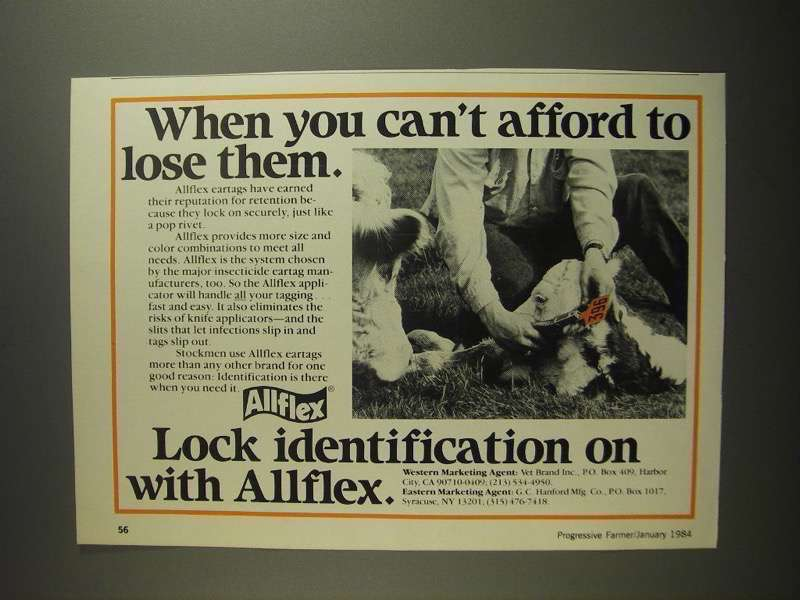 Primary image for 1984 Allflex Eartags Ad - You Can't Afford To Lose Them