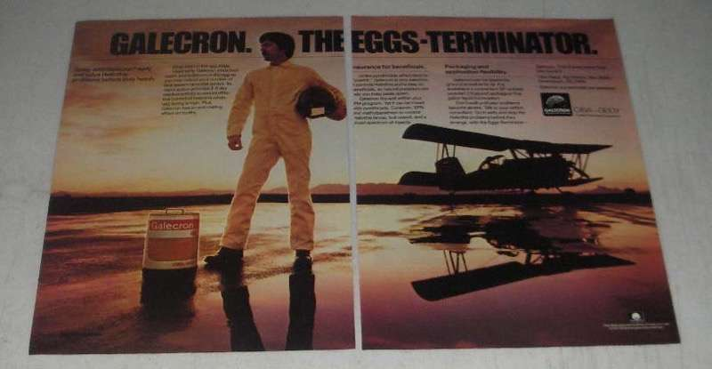 Primary image for 1984 Ciba-Geigy Galecron Ad - The Eggs-Terminator
