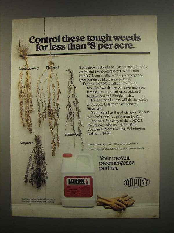 Primary image for 1984 Du Pont Lorox L Weed Killer Ad - Control Weeds