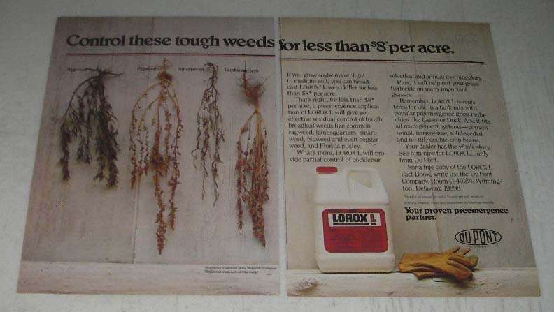 Primary image for 1984 Du pont Lorox L Ad - Control Tough Weeds