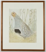 Partridge in Tall Grass, Modern French Watercolour, Framed Wall Decoration - €79,76 EUR