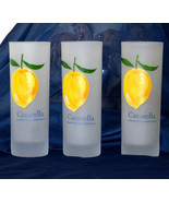 """CARAVELLA Limoncello Originale THREE 6-1/2"""" tall Frosted 8oz Highball Gl... - $32.95"""