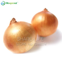 New Hot Delicious 100pcs Giant Onion Seeds Organic Vegetables For Interest DIY - $7.99