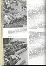 Vintage how to plan  establish and maintain rock gardens 4 thumb200