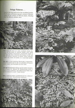 Vintage how to plan  establish and maintain rock gardens 5 thumb200