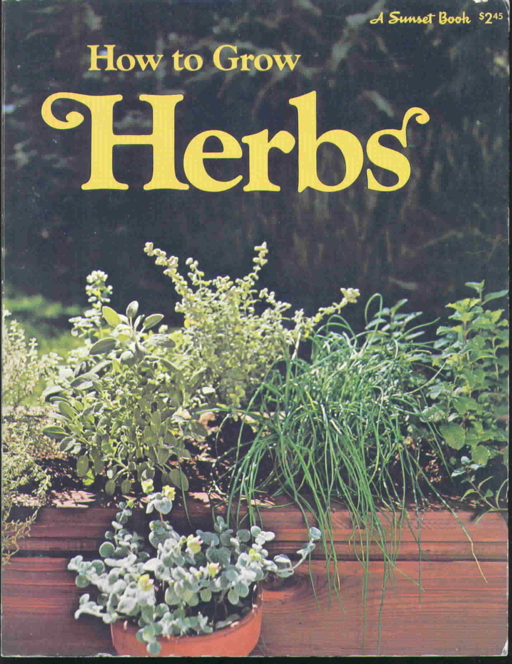 Vintage how to grow herbs