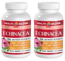 Anti-Inflammatory Capsules - Echinacea 400mg - Glycoproteins Extract 2B - $20.53