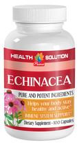 Echinacea Goldenseal - ECHINACEA EXTRACT 400MG ... - $12.16