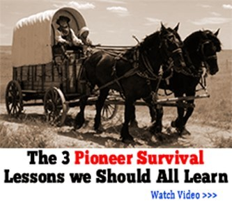 The Lost Ways; Lost Methods, How to Make Pemmican (The Ultimate Survival Food) &