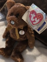 Fifa 2002 World Cup Champion Ty Beanie Baby Argentina Flag Nose Tag Protector - $12.50