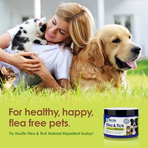 natural flea control for dogs and cats effective treatment garlic misc flea tick remedies. Black Bedroom Furniture Sets. Home Design Ideas