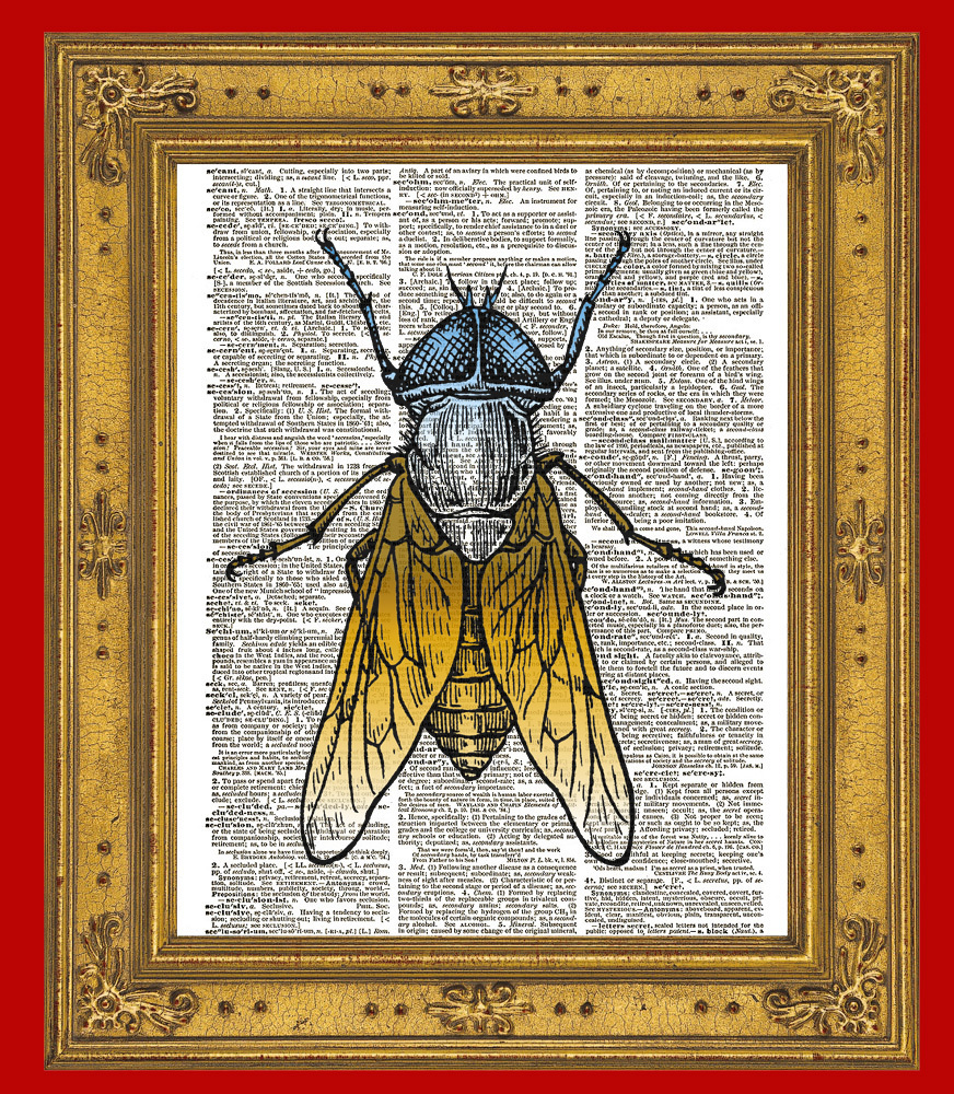 HORSEFLY Horse Fly Flying Insect Vintage Dictionary Page Art Print No. 0005