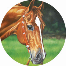 Handsome Horse Accent Magnet - $9.95