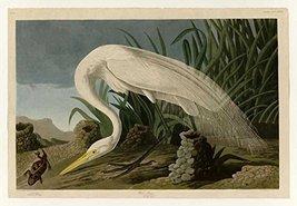 100% Hand Painted Oil on Canvas - Audubon - White Heron - Plate 386 - 24... - $315.81