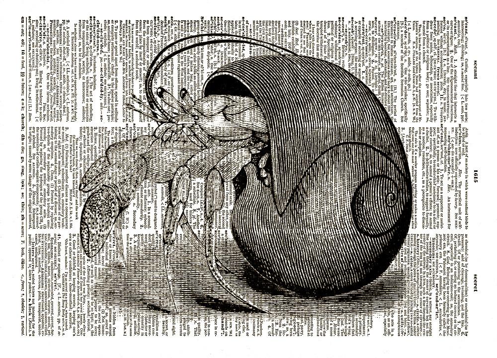 HERMIT CRAB Ocean Animal Crustacean Vintage Dictionary Page Art Print No. 0041