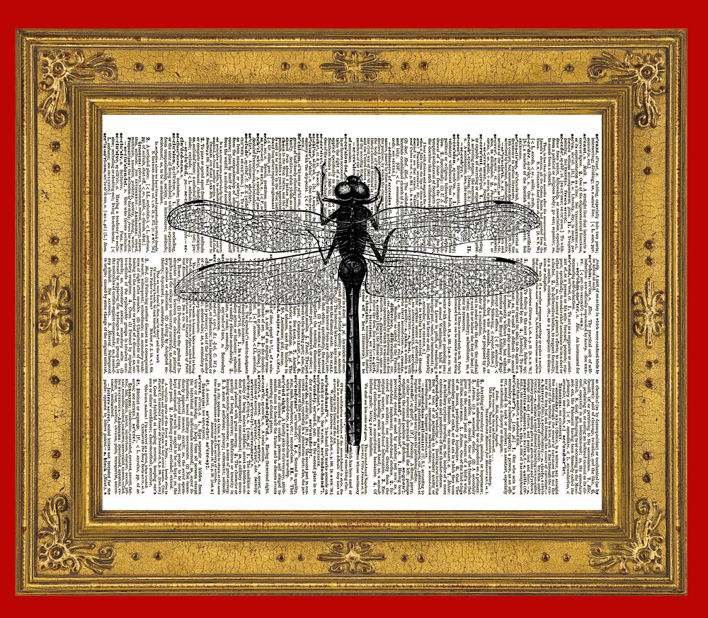 DRAGONFLY Flying Insect Wings Vintage Dictionary Art Print No. 0047