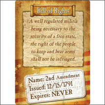 U-1591 12 inch x 17 inch RIVERS EDGE HOME DECOR NEW BILL OF RIGHTS TIN SIGN - $15.95