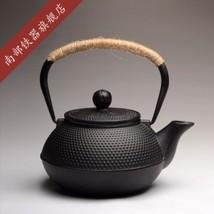 Japanese Cast Iron Teapot Set Tetsubin Authentic Kettle Drinkware Cookin... - $73.44