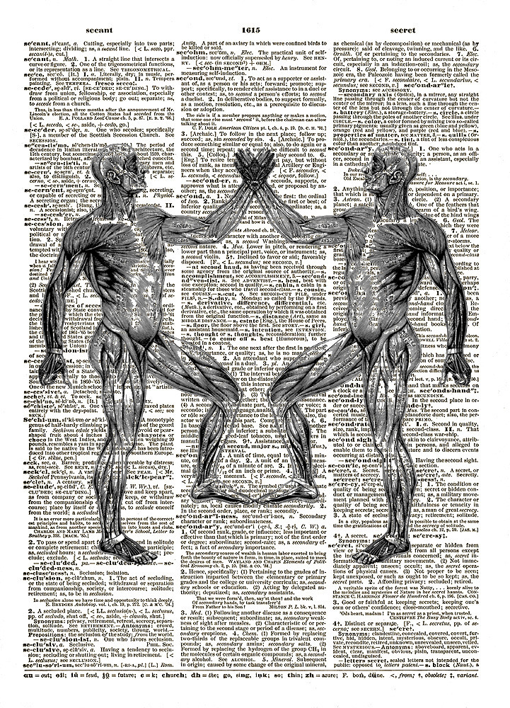 Mirror Image Human MUSCULAR SYSTEM Vintage Dictionary Page Art Print No. 0056