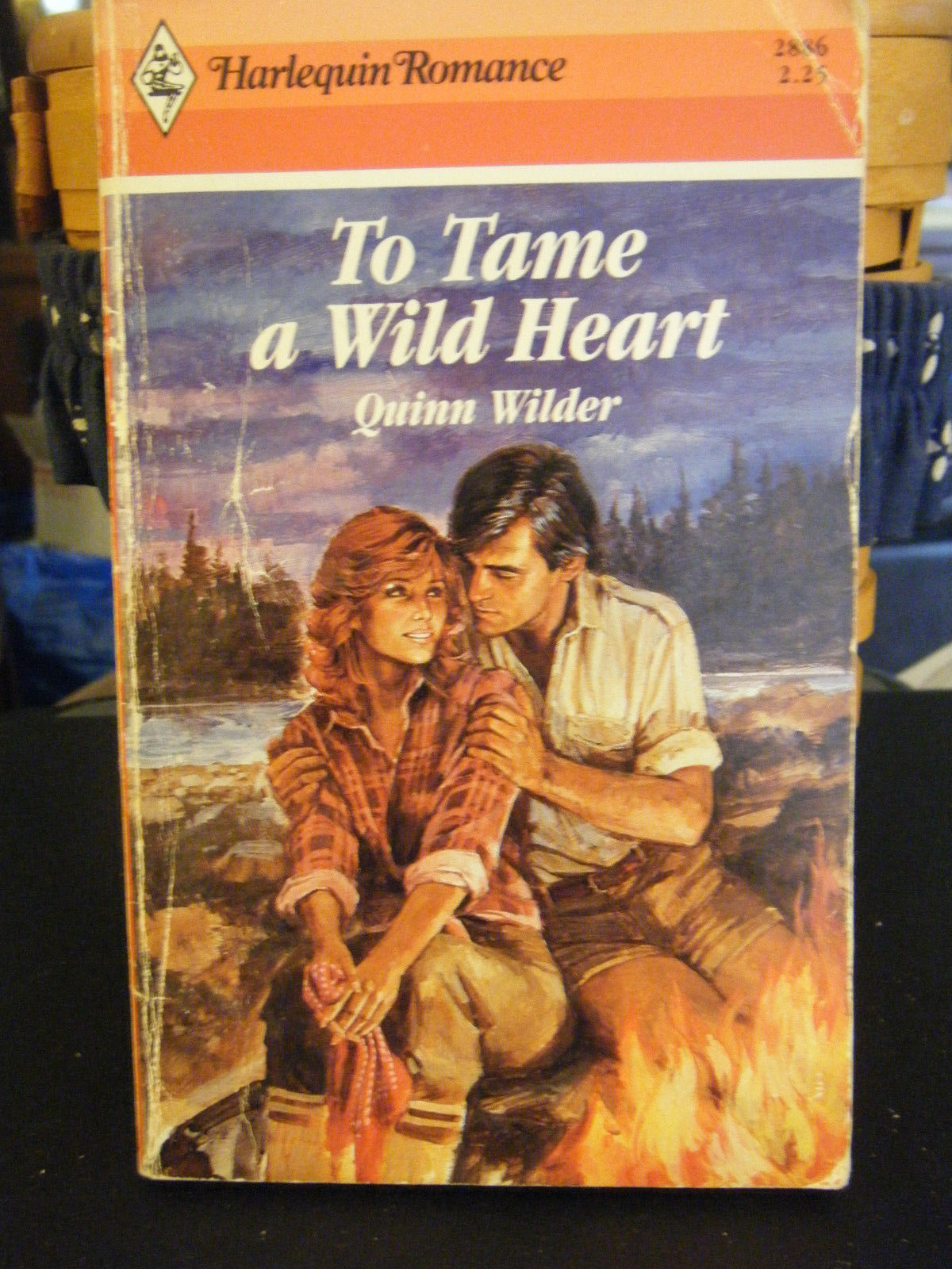 To Tame a Wild Heart by Quinn Wilder (1987, Paperback)