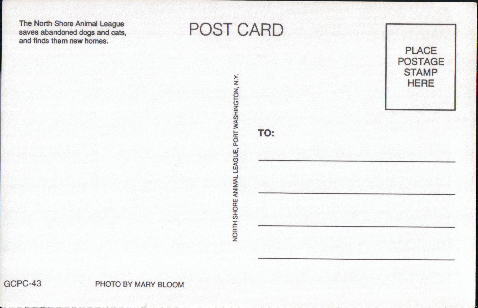 North Shore Animal League Post Card