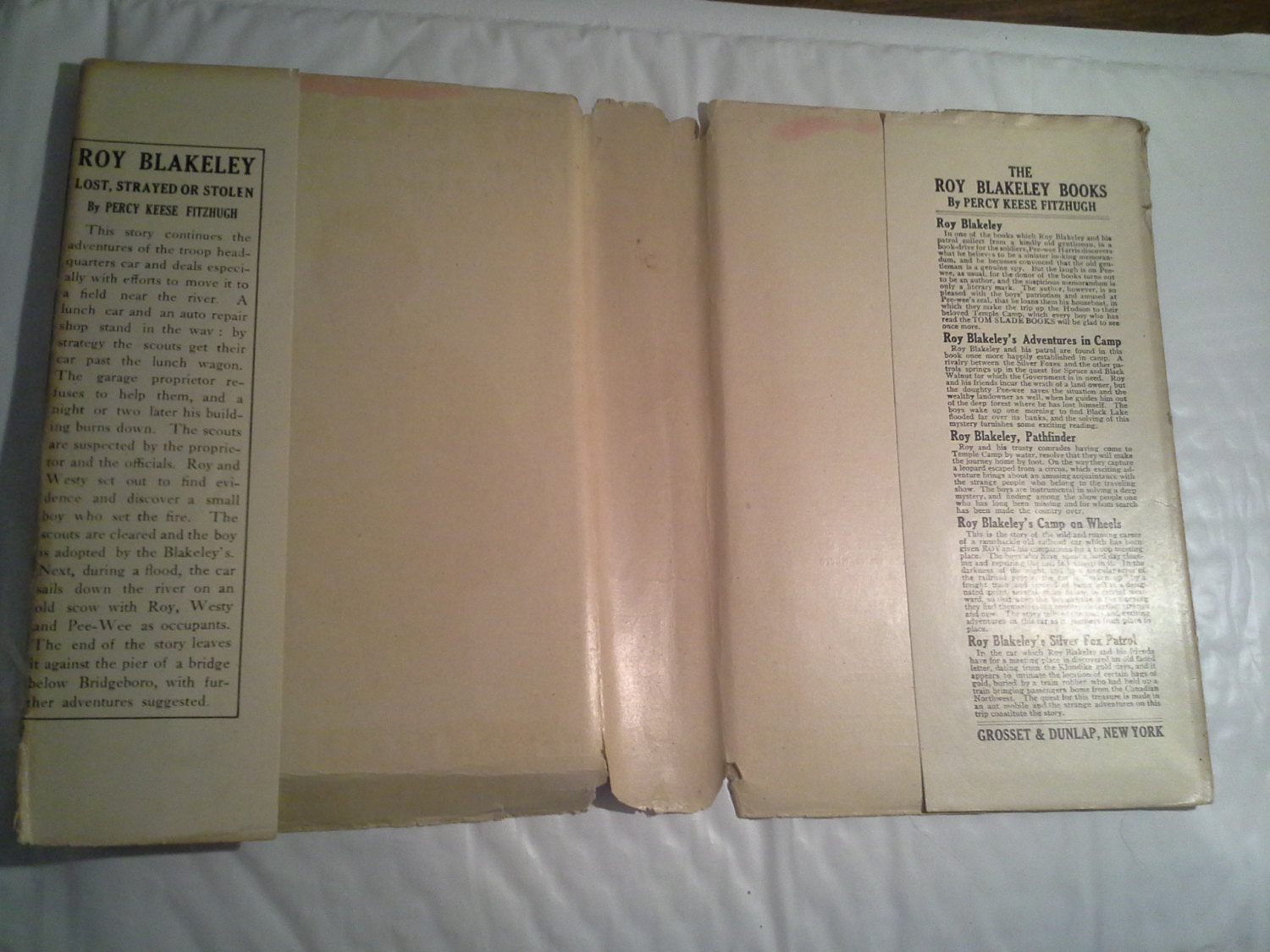 Roy Blakeley  Lost,Strayed or Stolen  by Percy Reese Fitzhugh  1921  Grosset & D