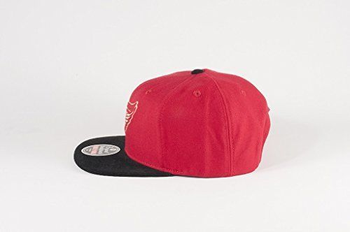 American Needle NHL Detroit Red Wings Vault Logo Snapback Cap Hat 13123