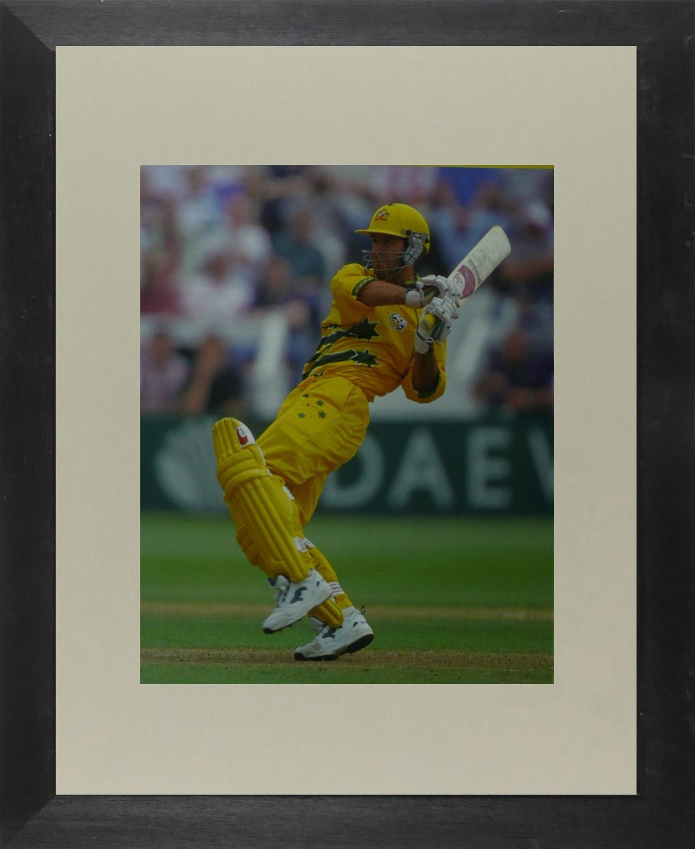 Ricky Ponting (Cricket) - Framed Picture 11 x 14