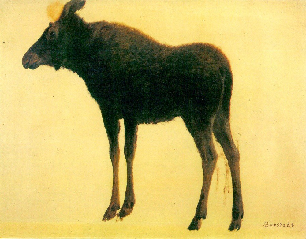 Roshni Arts - Famous Masterpieces 100% Hand Painted Oil on Canvas - Elk by B...