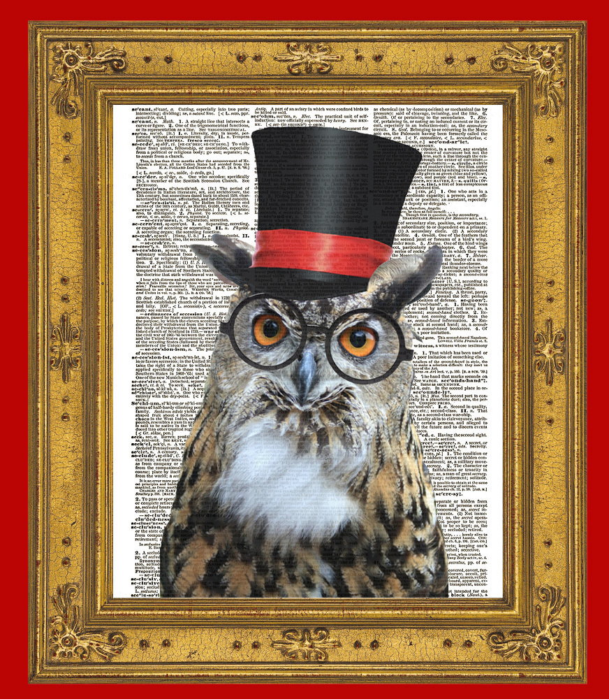 WISE OWL BIRD in Top Hat w/ Glasses Color Vintage Dictionary Art Print No. 0063