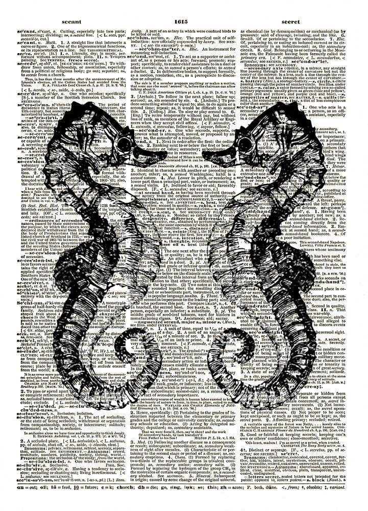 SEAHORSES Ocean Animals Mirror Image Vintage Dictionary Art Print No. 0068