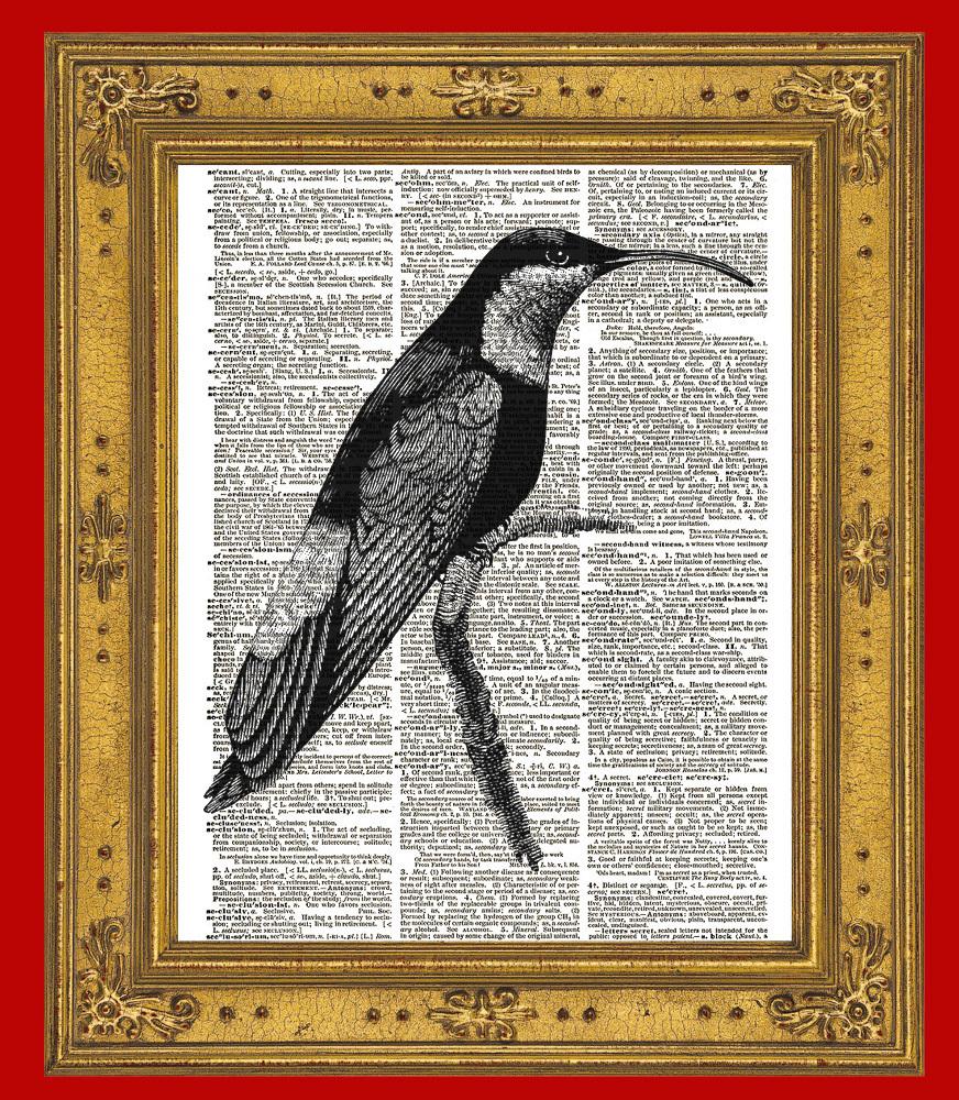 HUMMINGBIRD Bird Animal Vintage Dictionary Art Print No. 0075