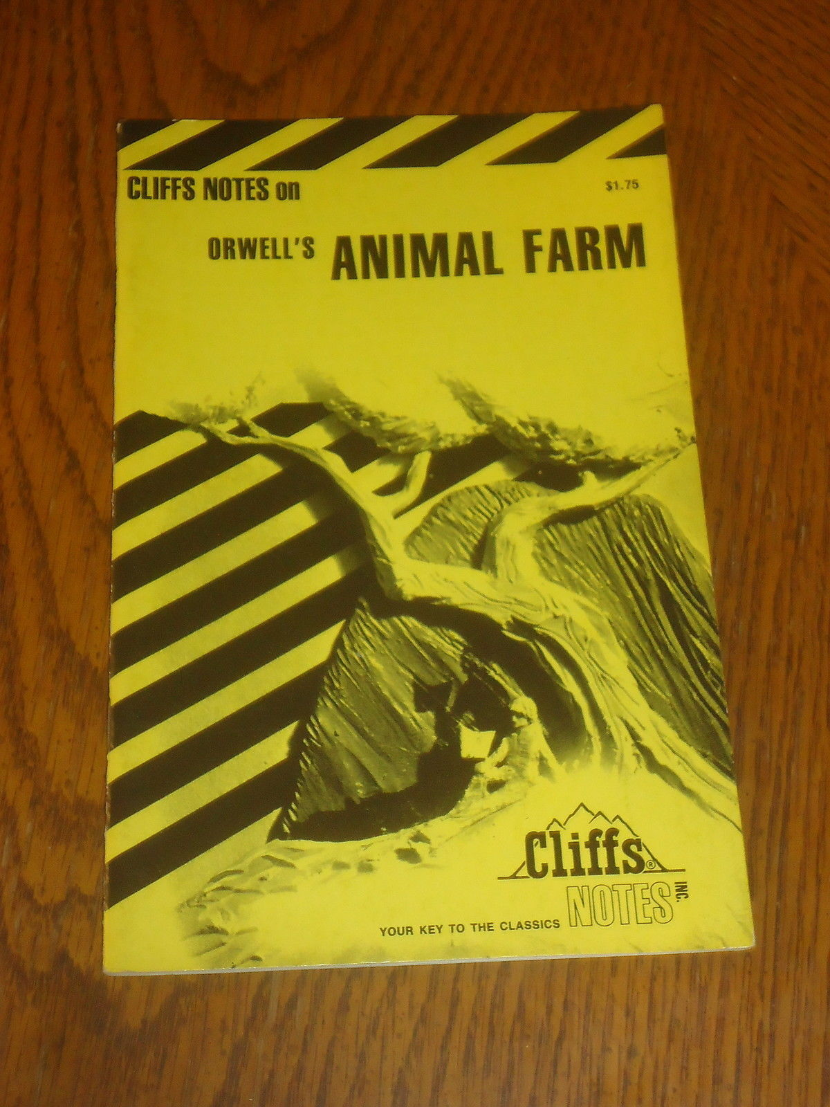 Primary image for CLIFFS NOTES on ORWELL'S ANIMAL FARM PB
