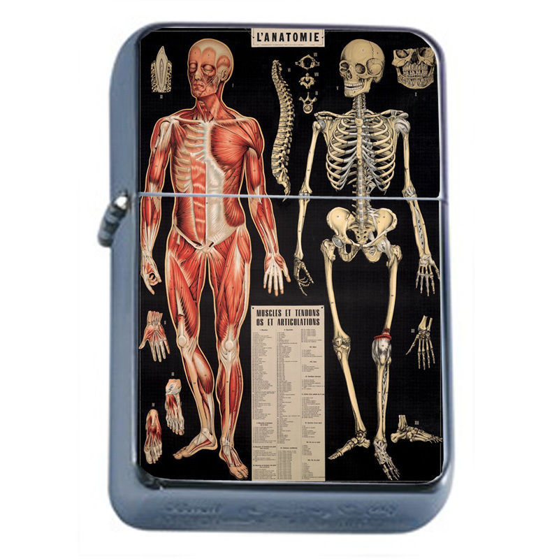 Primary image for Vintage Poster D41 Windproof Dual Flame Torch Lighter L'Anatomie Human Skeleton