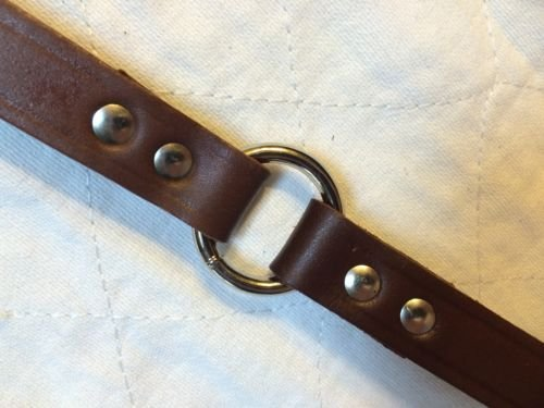 "Sparky PetCo 3/4"" W x 16"" Long Supple, Durable Brown Leather Dog Collar With ..."