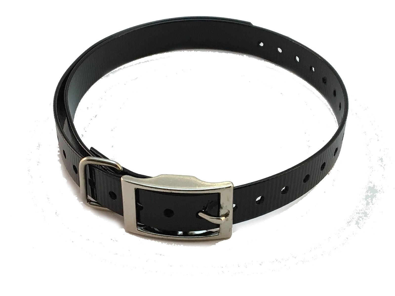 "E Collar Einstein Compatible 1"" Square Buckle High Flex Black Waterproof Dog ..."