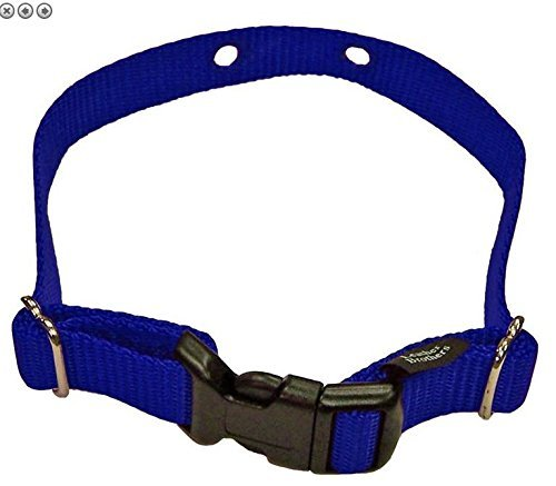 "Perimeter XXS Dog Fence Replacement Strap 2 Hole 5/8"" Wide-Purple"