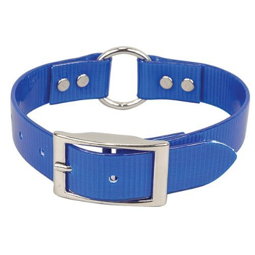 OmniPet 3/4 x 18-Inch Sunglo Ring-in-Center High Flex Dog Strap, Blue