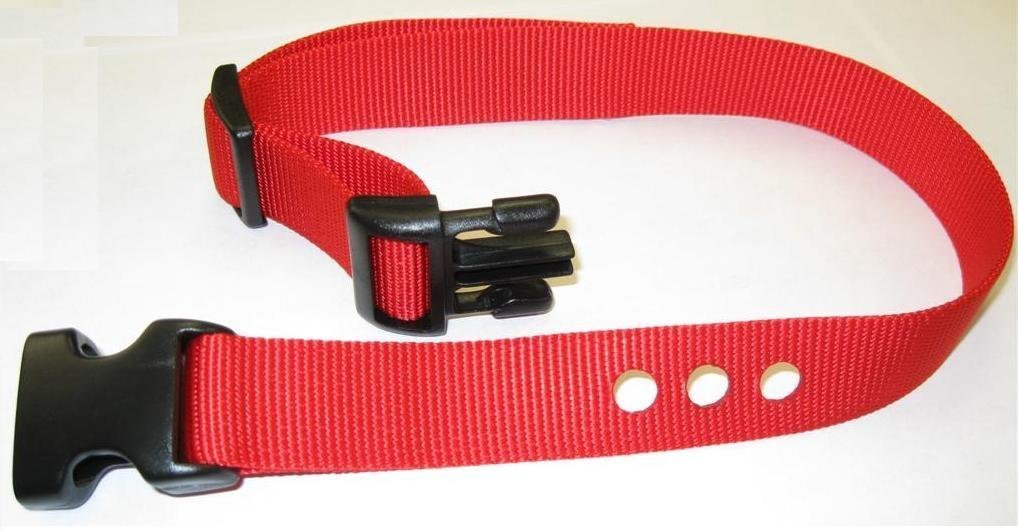 "Sparky PetCo 1"" Petsafe Replacement 3 Hole Dog Strap Red"