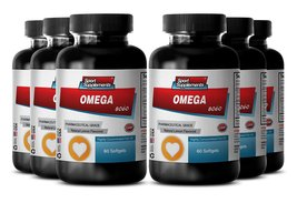 Omega 3 Oil Liquid - Omega 8060 - Premium Fish Oil Supplement to Provide... - $69.99