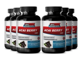 Premium Herbal Acai Berry Supplement - Acai Fruit (4:1) Concentrate 1200mg - ... - $64.99