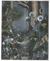First Meeting Fairies Ron Jean Henry Collectible Vintage 8X10 Matted Foi... - €5,89 EUR